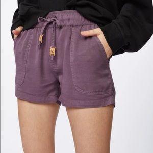 Tentree Purple Instow Shorts | size Medium